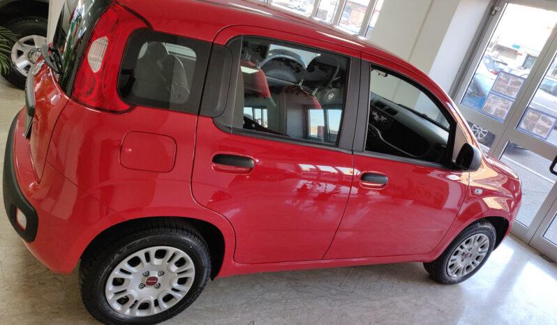 Fiat Panda KM0 / Nuovo / usato aziendali pieno