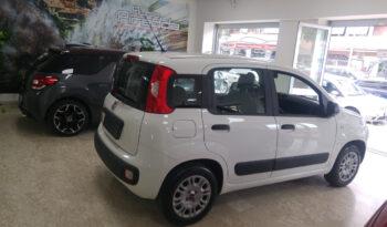 Fiat Panda da Noleggio pieno