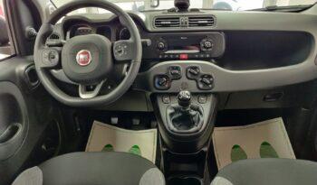 Fiat Panda 1.0 FireFly S&S Hybrid City Life pieno